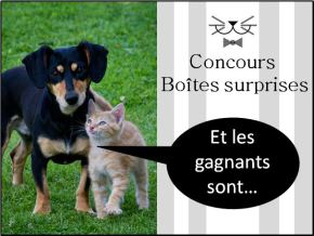 photo concours gagnants